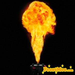Feest Vlammenwerper